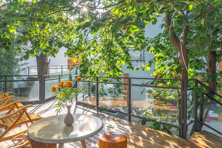 长水机场旁(免费早餐接送机)见南山民宿【竹韵】庭院景观双床房