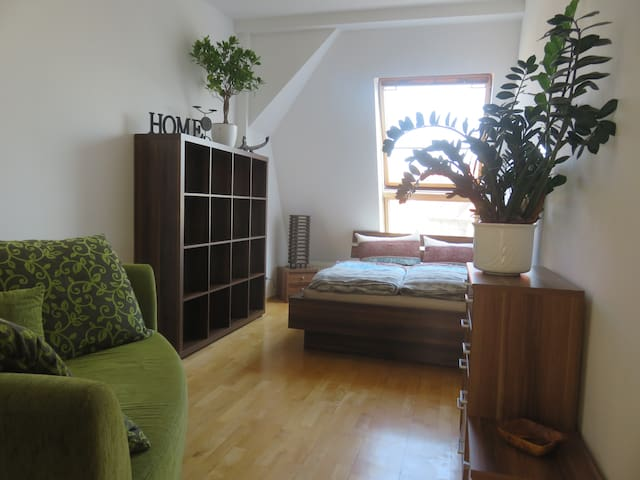 Cozy room in comfortable 180qm flat, 40qm terrace - Berlín