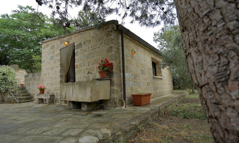 Deliziosa casa  tra gli olivi - Arnesano - House