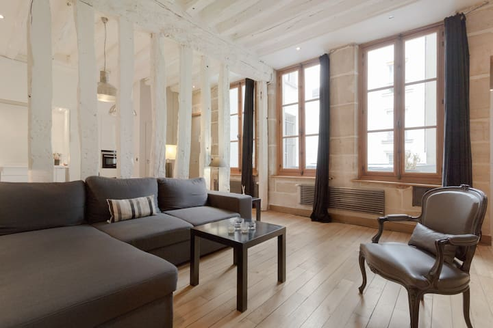 Amazing appartment in the Marais