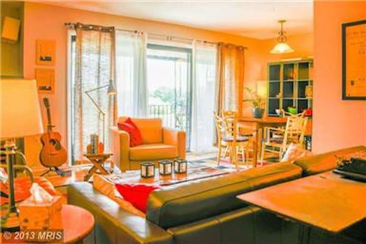 Quiet & Comfortable 2 BD apartment - Takoma Park - Apartment