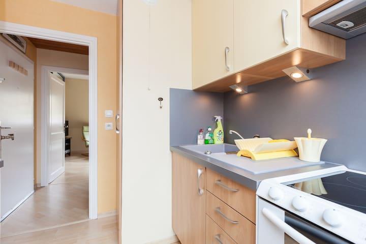 40 m² campagne strasbourgeoise (3*) - Mundolsheim - Flat