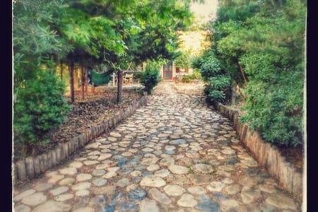 ΆΛΦΑ-ΆΛΦΑ  Bungalows - Σαμοθράκη - Haus