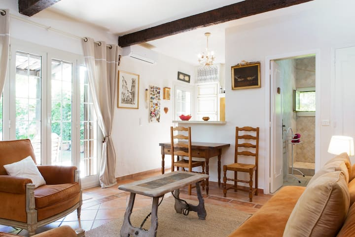 Provencal Villa in St Paul de Vence - Saint-Paul-de-Vence - Villa