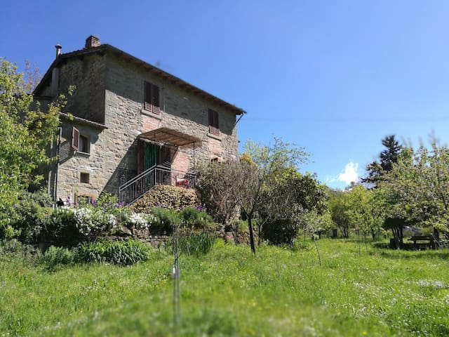 Your stone house (with garden!) in Casentino...