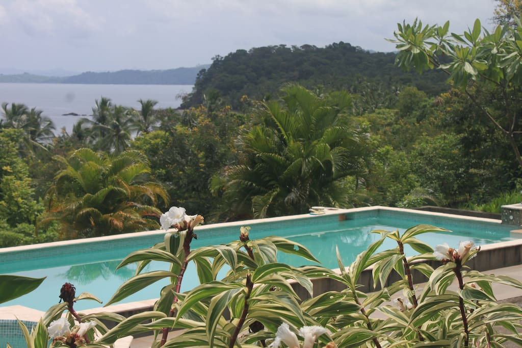 View from the terrace overlooking pool and beach.