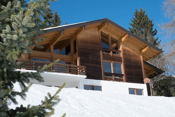 Spacious Chalet for families or business trips