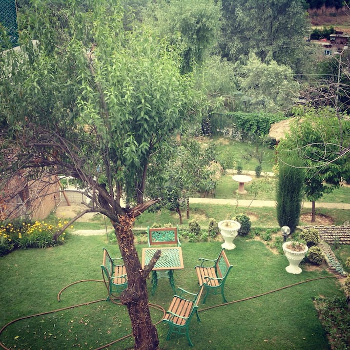 'Isband Garden', a small garden but full of positive vibes!
