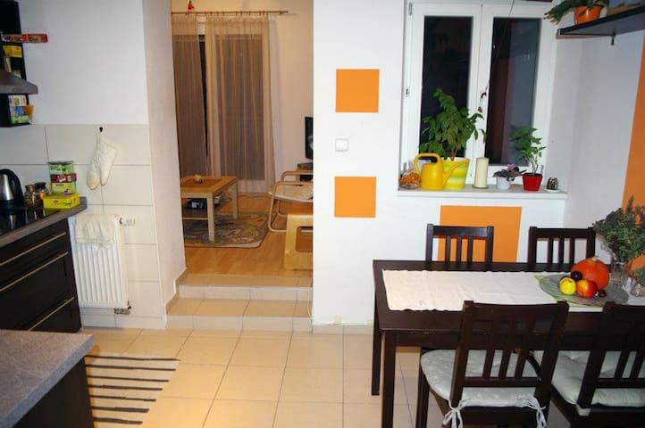 Podkrovní byt v centru Brna s tichou terasou - Brno - Leilighet