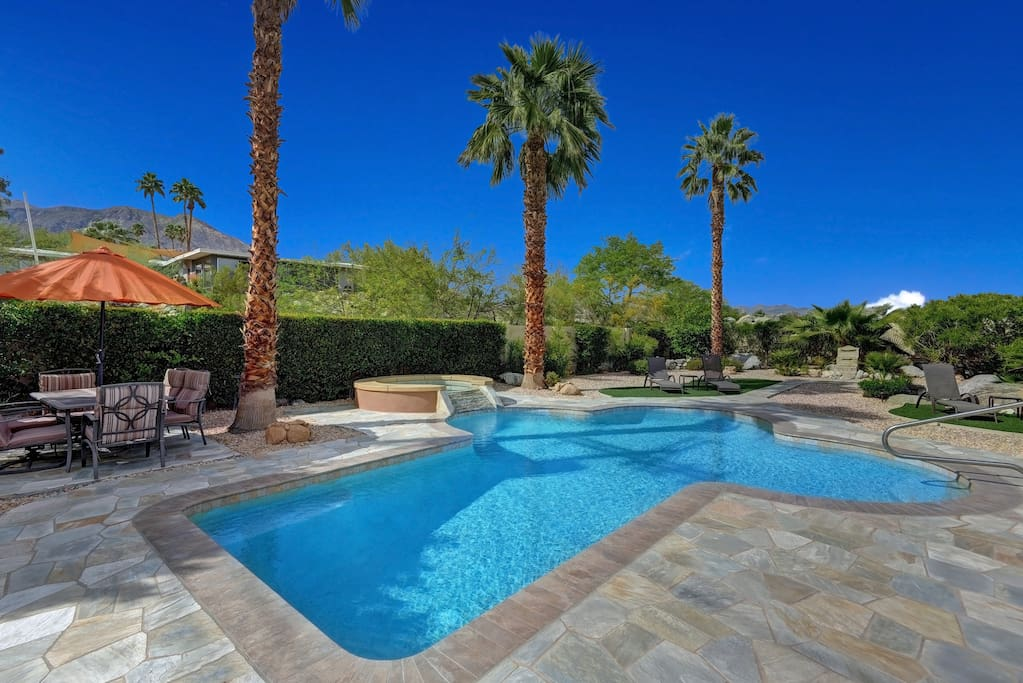 Pool to Palm Trees