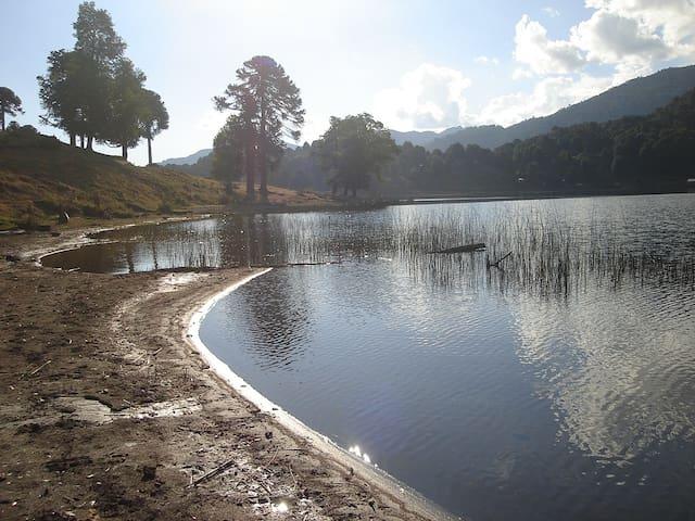 Lindas Cabañas orilla lago Icalma   - Lonquimay - Cabin
