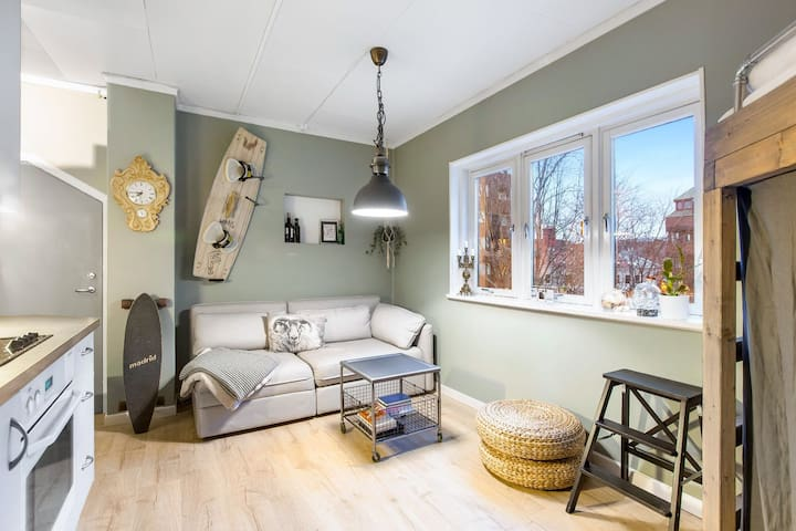 Cozy one bedroom apartment in sentral Oslo