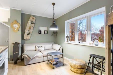 Cozy one bedroom apartment in sentral Oslo