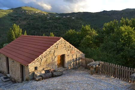 Douro Country House (11pax) - Resende
