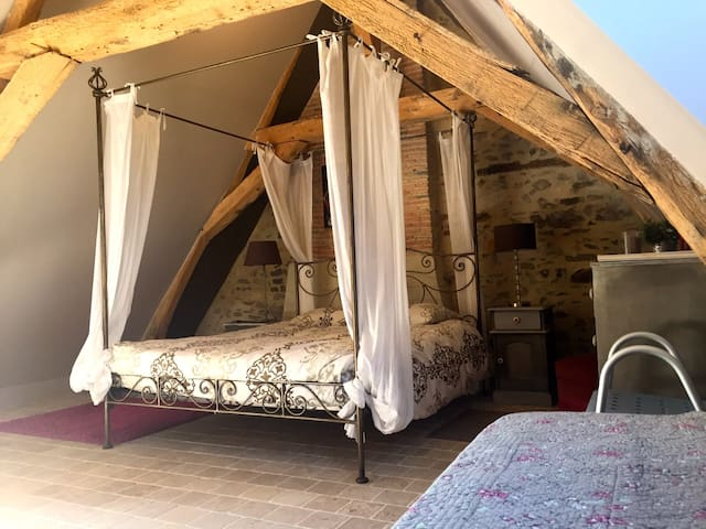 Maison de charme, IDEAL detente en bord de LOIRE - Pays de la Loire - Hus
