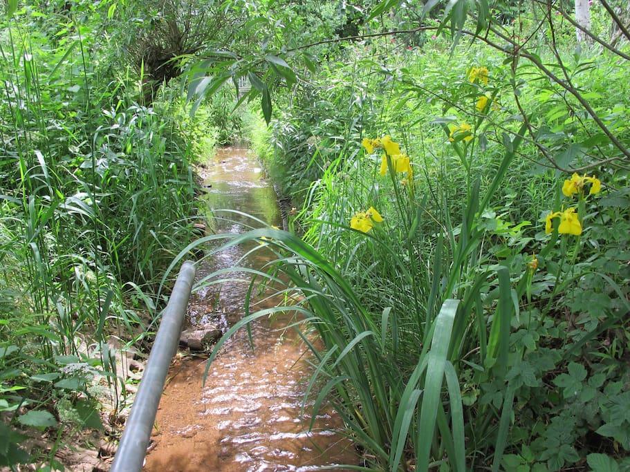 Bach im Garten, Kneippgeländer