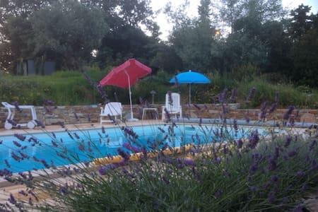CORSE 2 pièces luxe, piscine chauffée 29° + jardin - Venzolasca