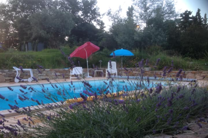 CORSE 2 pièces luxe, piscine chauffée 29° + jardin