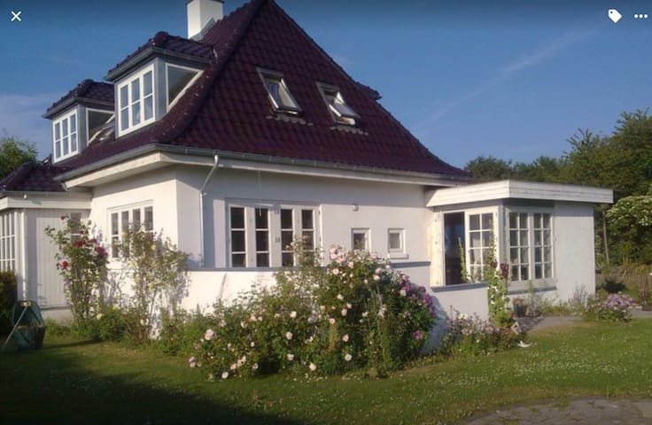 House with a lot of danish Hygge2