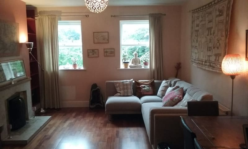 Spacious South City Apartment-Free Parking