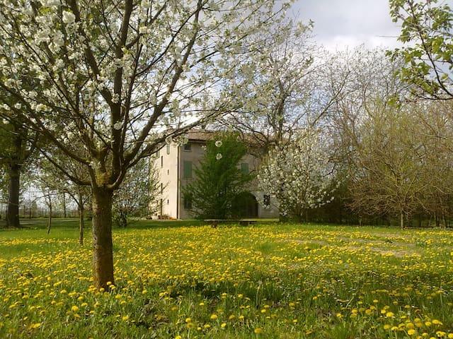 Bella camera in campagna - Pieve di Cento - Suíte de hóspedes