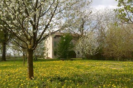 Bella camera in campagna - Pieve di Cento