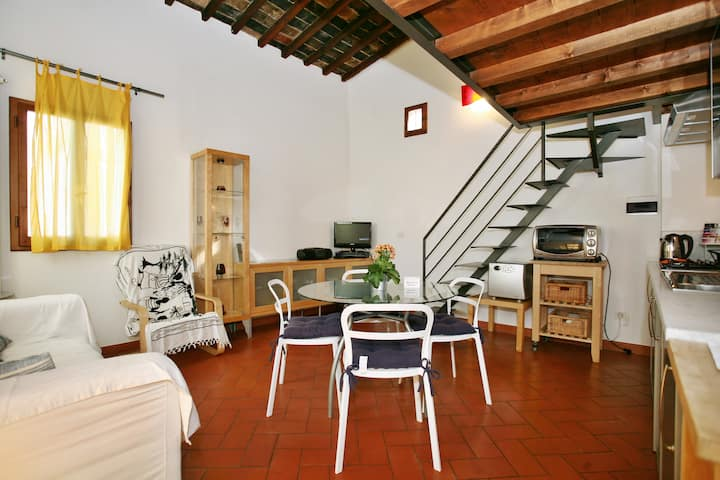 Cozy apartment - heart of Florence