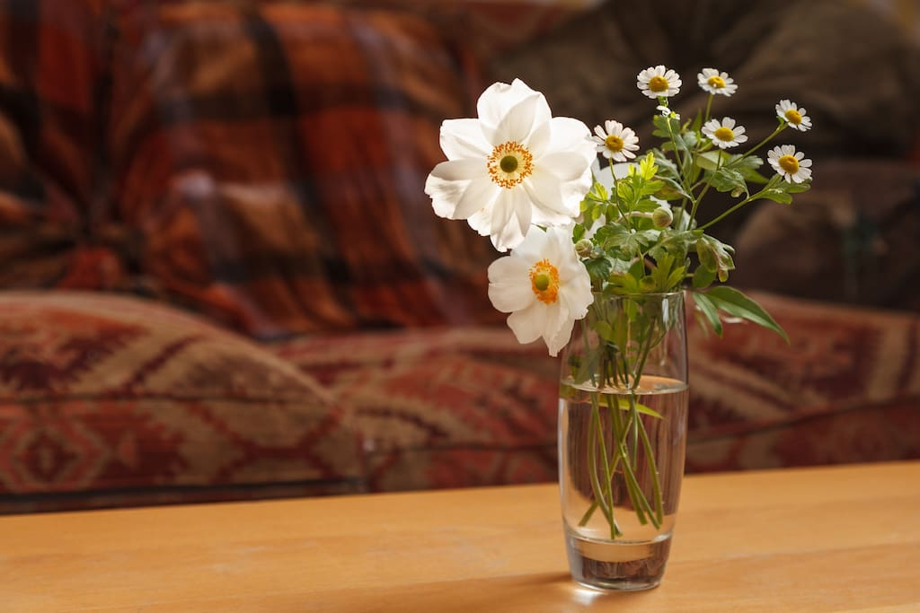Here are some home grown Japanese Anemones to brighten your day.