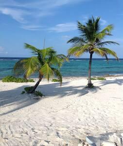 Luxury 3 Bed Villa in Grand Cayman - Cayman Kai
