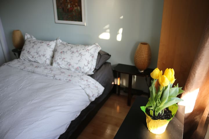 Comfy and authentic nest in the heart of Villeray - Montréal - Appartement