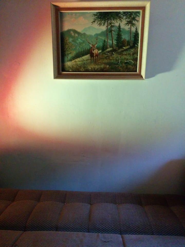 Ruhiges Zimmer an Waldrandidylle