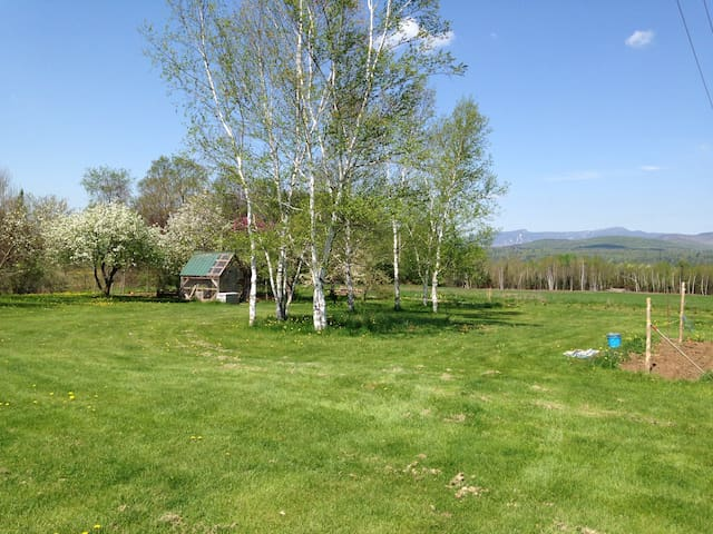 Large yard with nice views and chicken coop