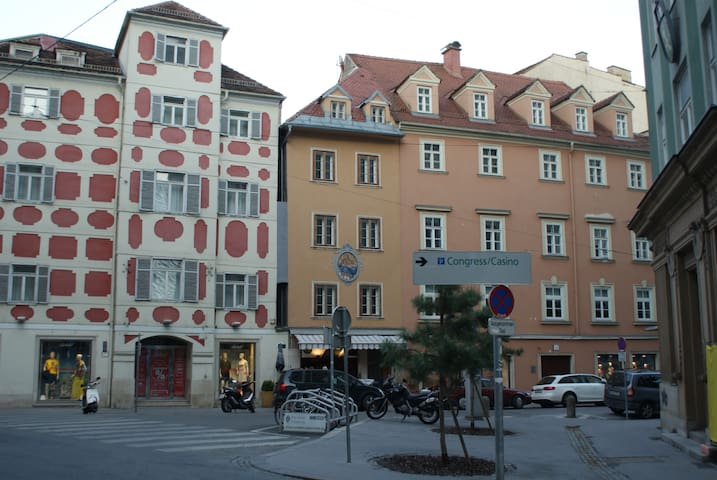Historic City Center Flat no.1 air-conditioned - Graz - Appartement