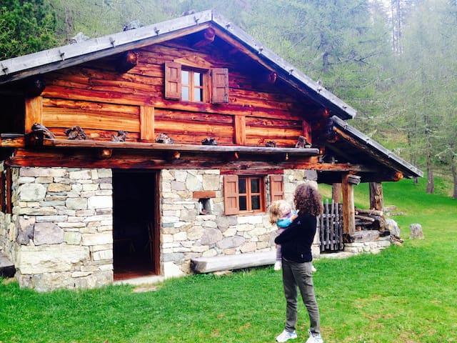 Tana dell'Orso - Ronchi Valsugana - Cabin