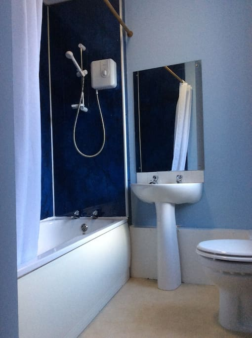 The bathroom has an electric shower over the bath.