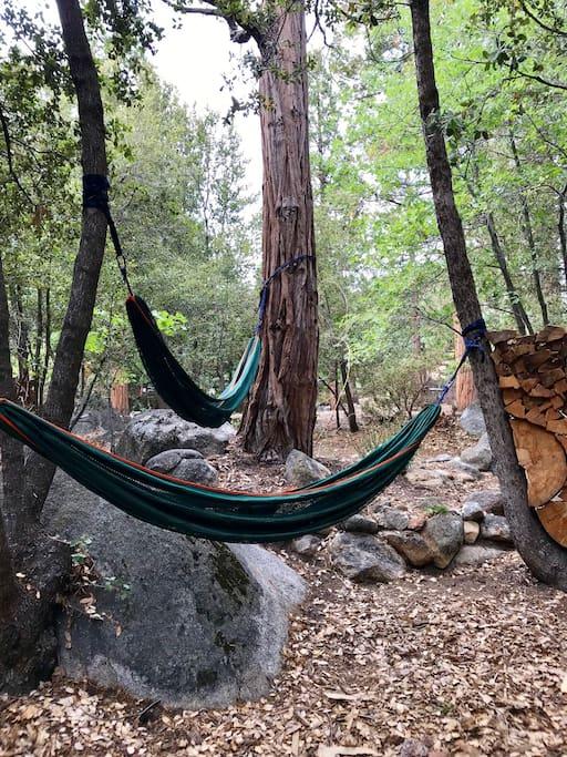 Hammocks for lounging