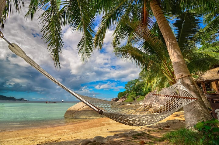 HAMMOCK at the BEACH while SUNRISE