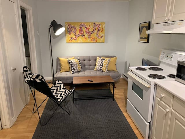 1 Bedroom Apartment - Near Downtown/With Parking!!