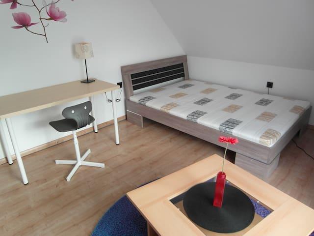 Modernes Zimmer in Einfamilienhaus - Erfurt - Haus
