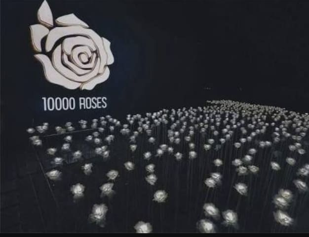 Few minutes walk to 10000 Roses