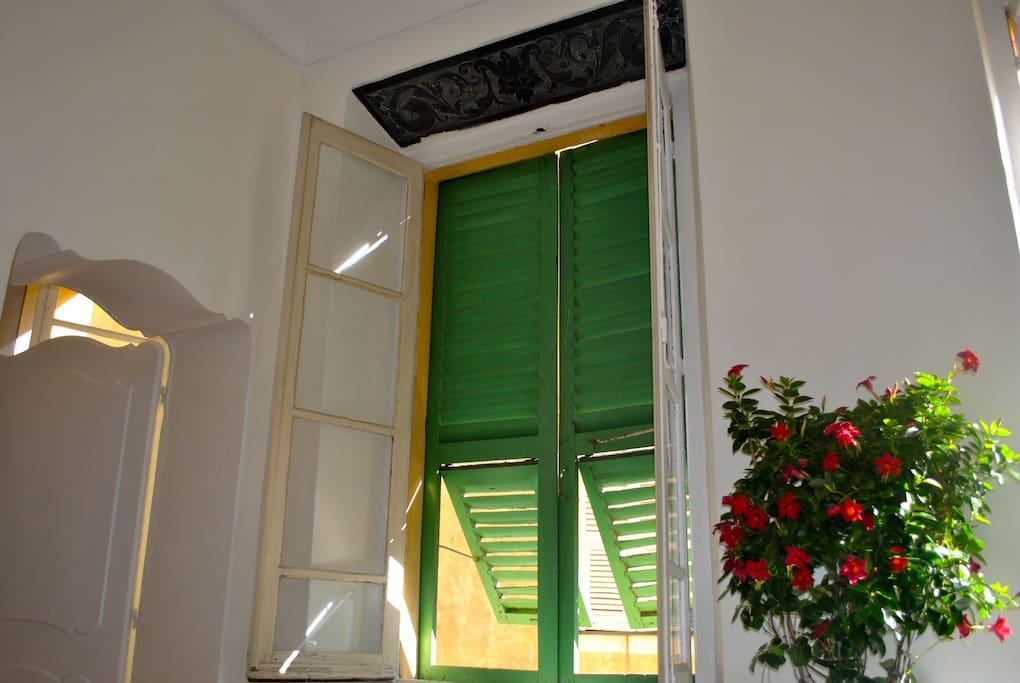 Sunlight through green shutters