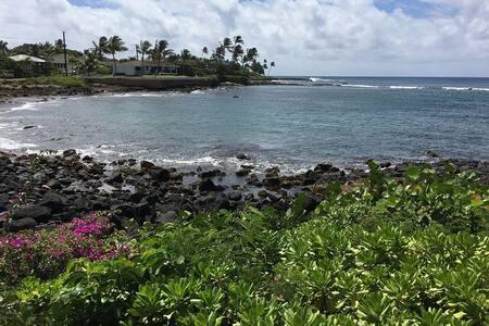 Gorgeous Oceanfront condo at Kuhio Shores, Kauai. - 阿韦洛亚 - 公寓
