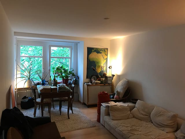 Cozy apartment in one of Zurichs best areas