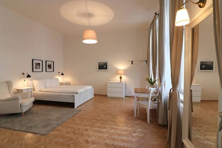 SPACIOUS AND BRIGHT NEW APPARTMENT IN THE CENTER - Vienna - Pis