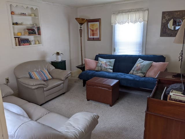 The blue couch is a full-size futon with spring mattress.  Comfy!