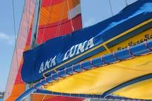 Sail the Sea Lover!