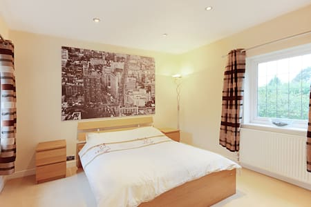 Room perfect for business traveller - Reading - House