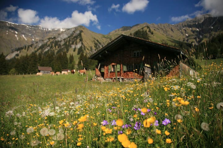 Bärghüsi Düretli - Adelboden - Casa