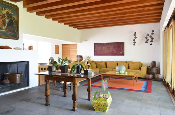 Tequila Agave Modern Hacienda