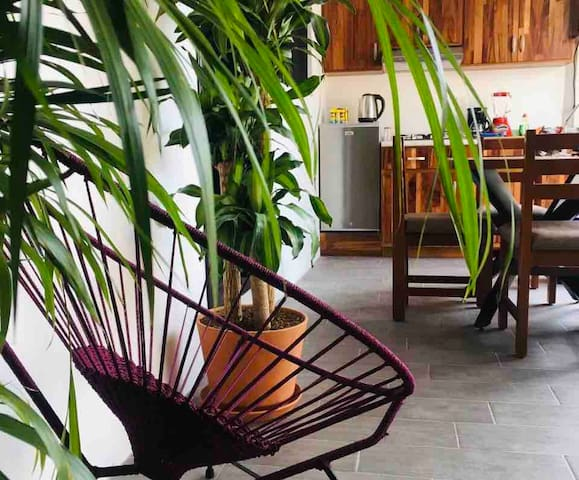 Cosy & Calm apartment  - best area of Oaxaca #1